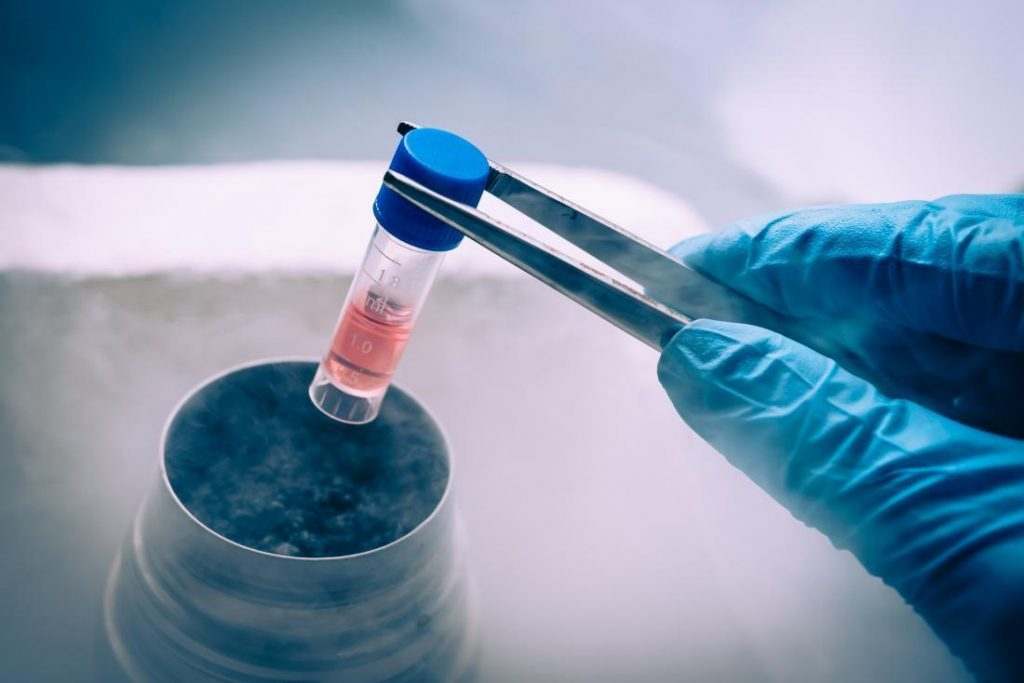 The Topic for Those People who are Interested in Embryonic Stem Cell Tests